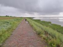 Uferweg an der Wasserkante