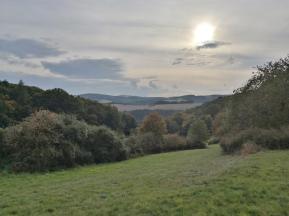 Blick über das Tal des Fischbachs hinweg