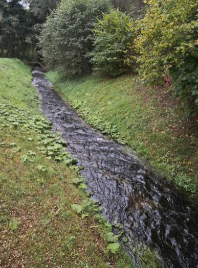 Abfluss des Steinbachs hinter der Staumauer
