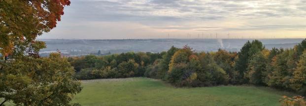 Blick hinunter nach Kirchheimbolanden. Die Windräder am Horizont gehören bereits zum Stadtgebiet von Alzey.