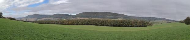 Panoramablick auf den Wald am Mittelberg. Dahinter liegt Baumholder.