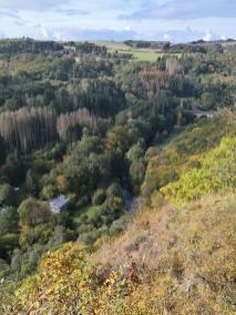 Blick von der Kanzel zur Alten Wassermühle und zur Eisenbahnbrücke über die Nahe (rechts)