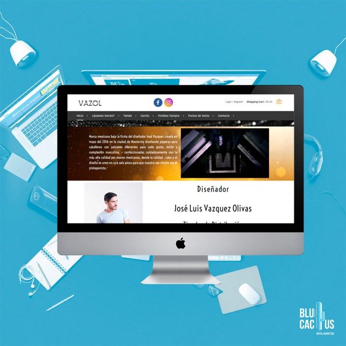 BluCactus Agencia de Diseño de páginas web - Vazol