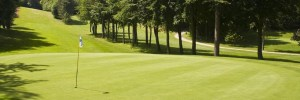 Golf at Sherwood Forest