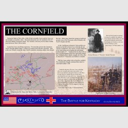 03_cornfield_07