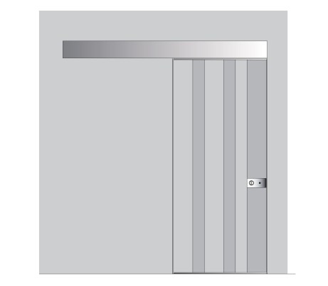 Vela Sliding Security Door