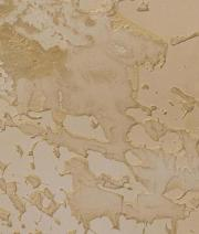 Textured gold Wall Finishing Effect