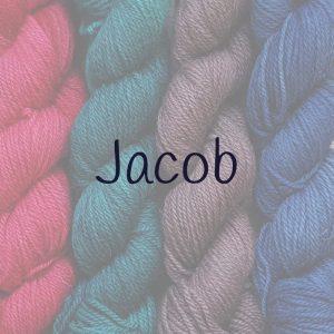 Category Title - Jacob