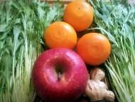 水菜マインドオープナーの材料