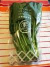ほうれん草 Spinach