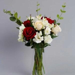 Velvet Rose 3