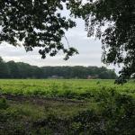 Die Via Baltica – Von Zeven nach Otterstedt