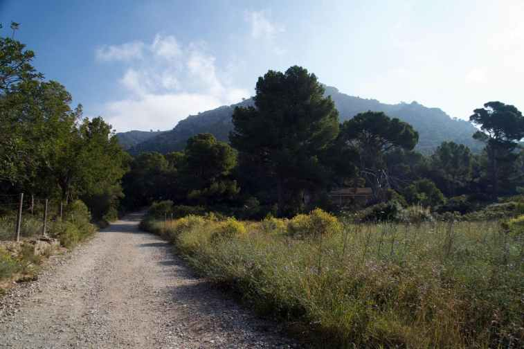 GR 221 Sant Elm - Ses Fontanelles_11
