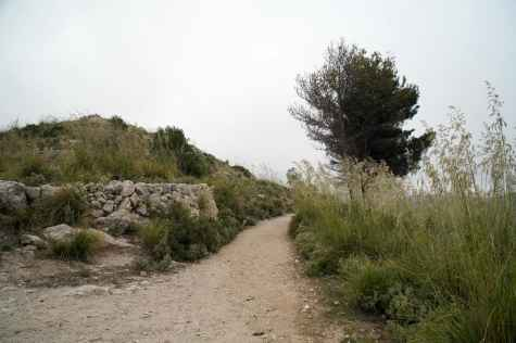 GR 221 Sant Elm - Ses Fontanelles_128
