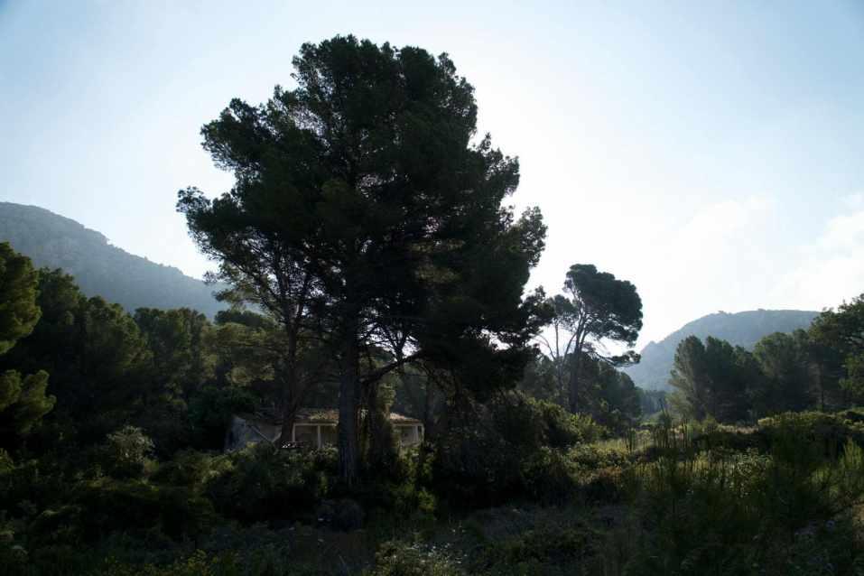 GR 221 Sant Elm - Ses Fontanelles_13