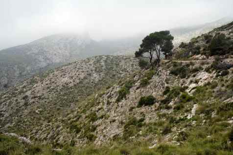 GR 221 Sant Elm - Ses Fontanelles_140