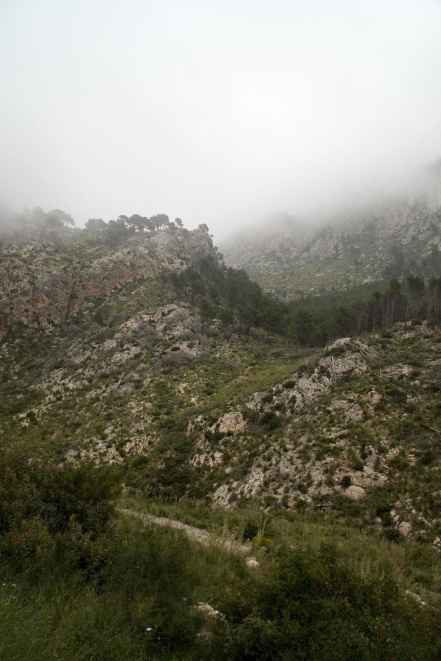 GR 221 Sant Elm - Ses Fontanelles_164