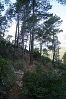 GR 221 Sant Elm - Ses Fontanelles_39