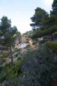 GR 221 Sant Elm - Ses Fontanelles_44