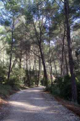 GR 221 Sant Elm - Ses Fontanelles_7