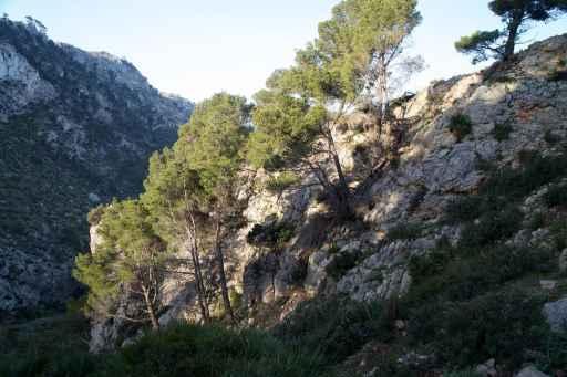 GR 221 Ses Fontanelles - Estellencs_11