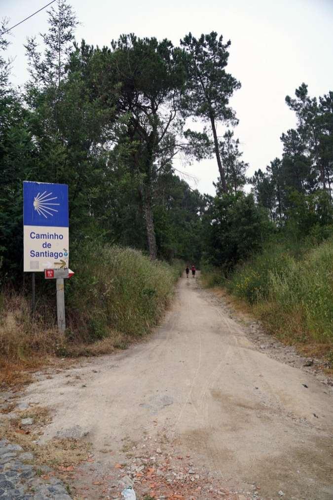 Camino Português DSC01413