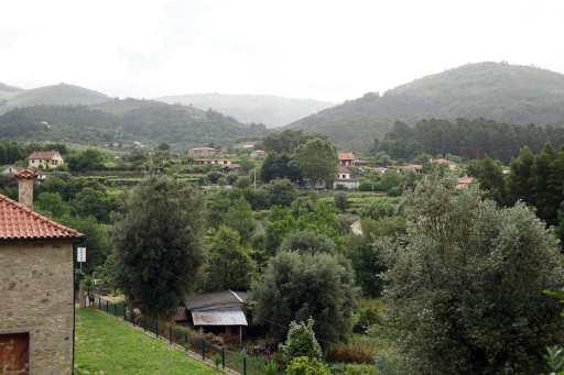 Camino Português DSC01586