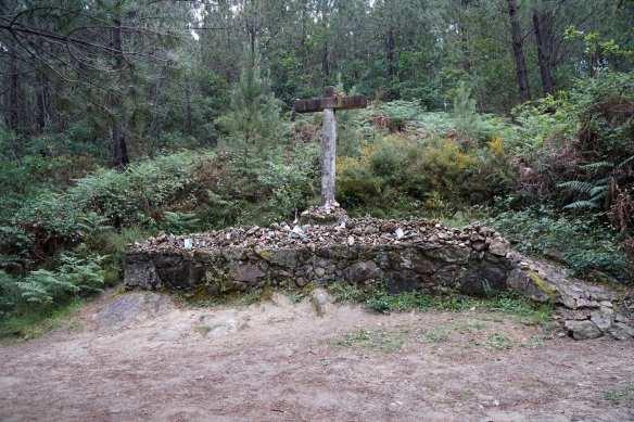 Camino Português DSC01606