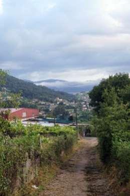 Camino Português DSC01792