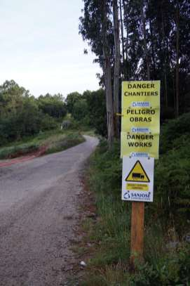 Camino Português DSC01867