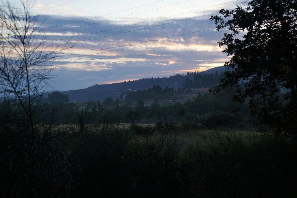 Camino Português DSC01961