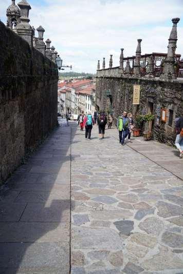 Camino Português DSC02140