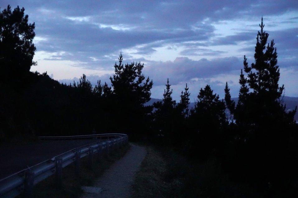 Camino Português DSC02659