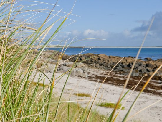 marram_beach