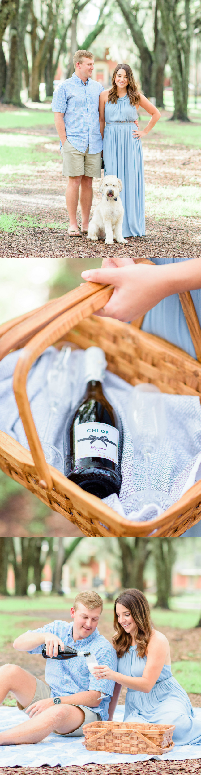 Picnic and champagne toast engagement photos | Photo Credit: The Veil Wedding Photography