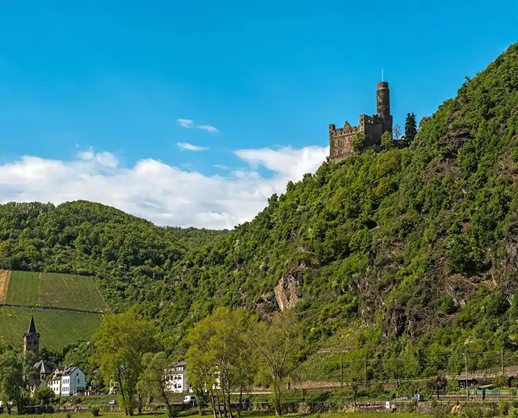 enchantingrhine_germany_rhinegor