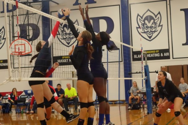 Women's volleyball looks strong in first home match | Blue ...