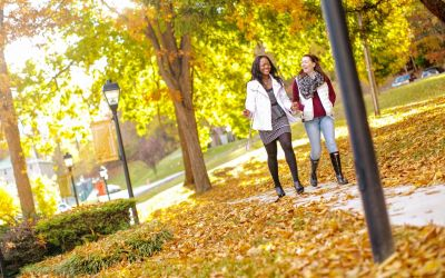 Returning to Campus in the Fall: What to Look for