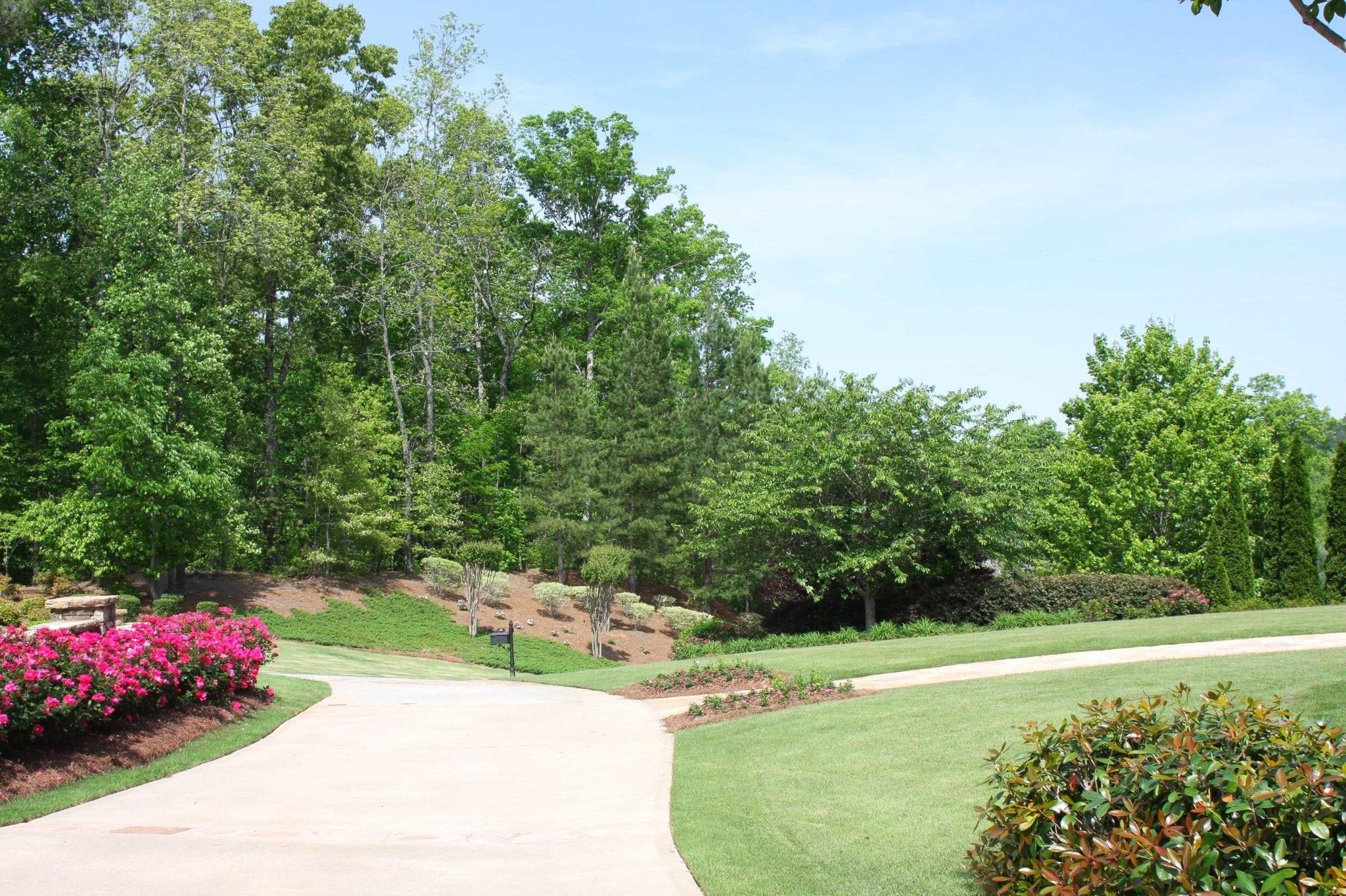 Atlanta trees and greenery.