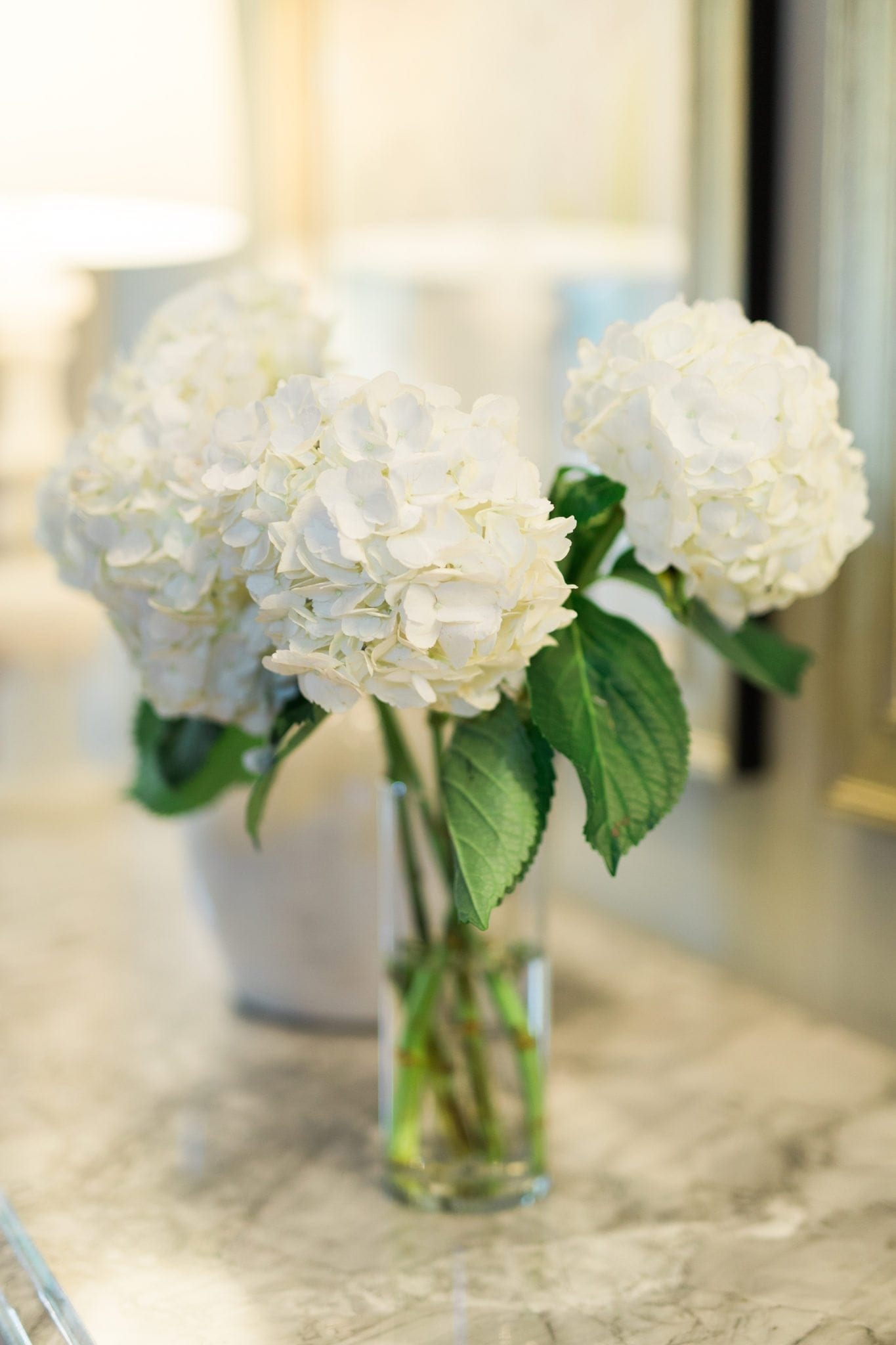 Easy tips to keep your hydrangeas alive longer.