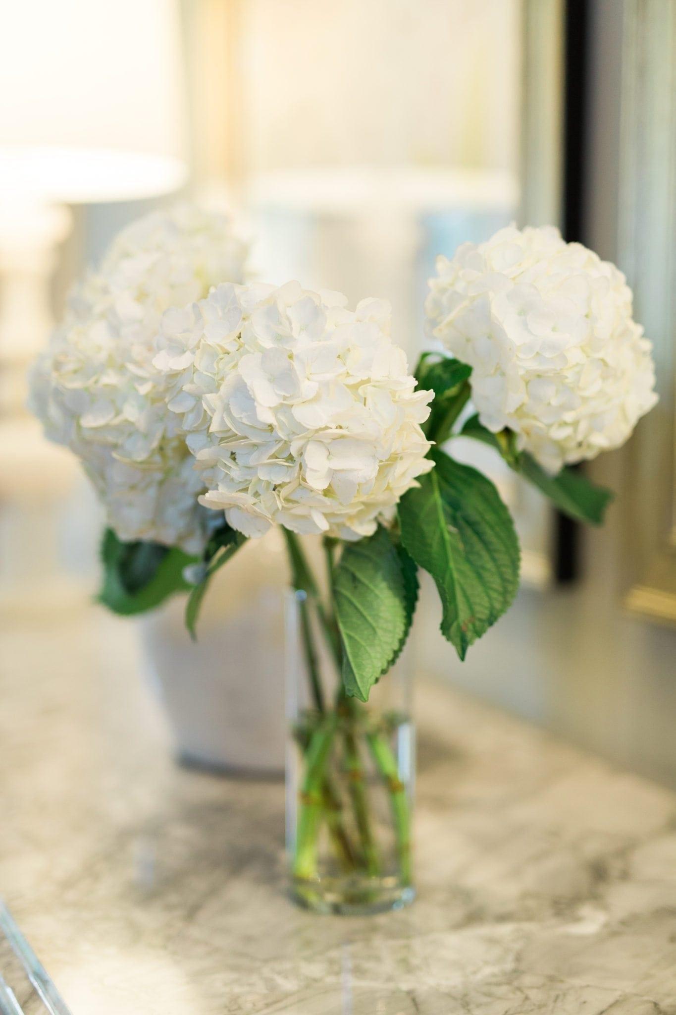 Easy tips to keep your hydrangeas alive longer.
