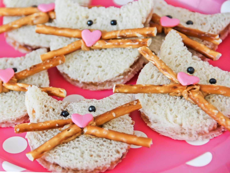 Kitten sandwiches