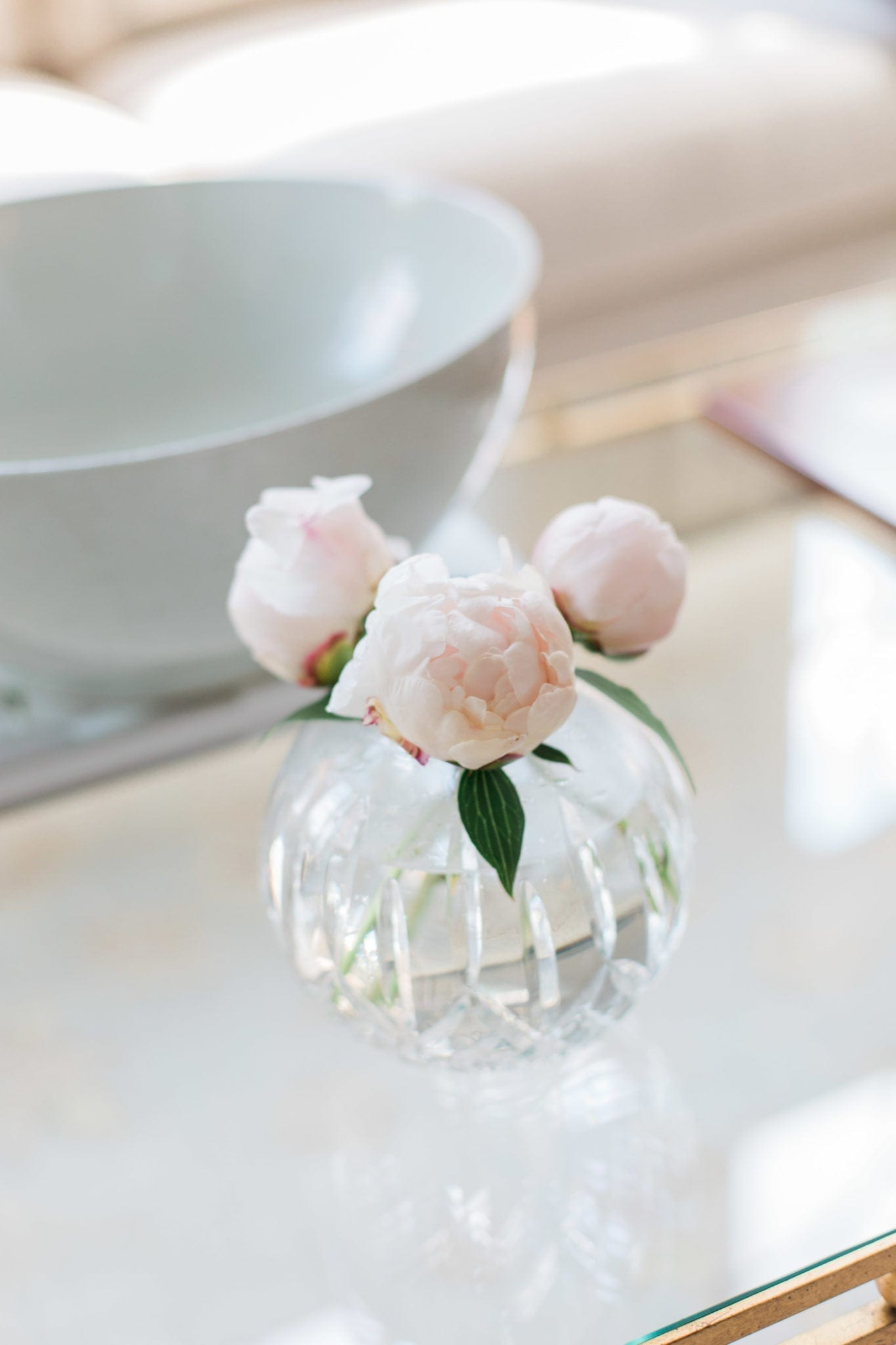 Soft pink peony blooms in Waterford Vase. How to cut peony blooms.