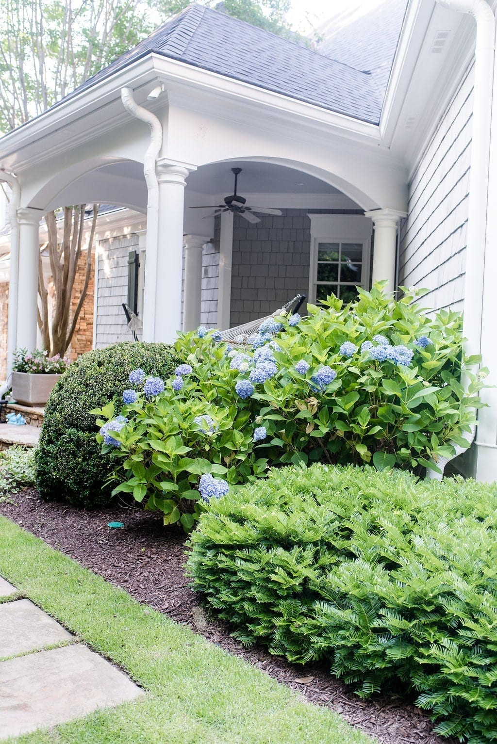 Where to plant hydrangea. Atlanta home with cedar siding and blue Endless Summer hydrangea bush.