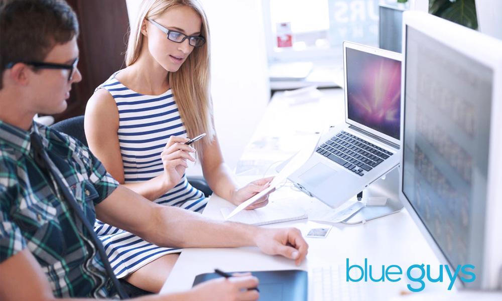 Blue Guys Website Design Mexico