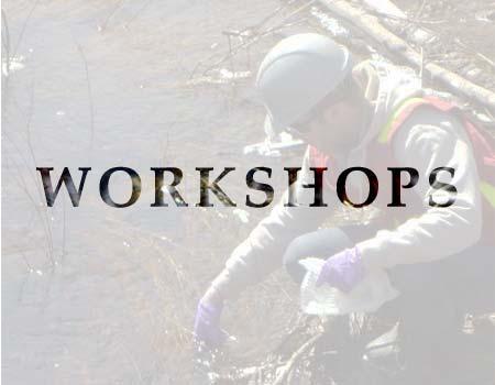 Blue Herons list of Environmental Workshop Courses