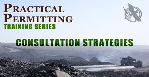 Consultation Strategies