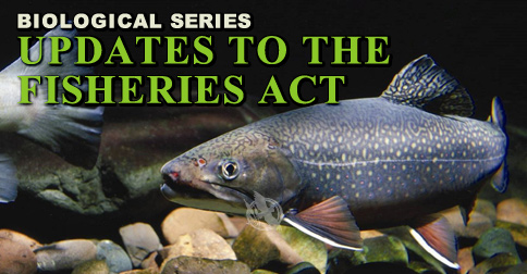 Updates to the Fisheries Act