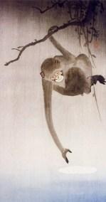 Animal Frolics - monkey