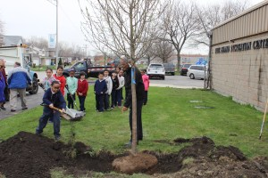 Students Help Plant the Tree